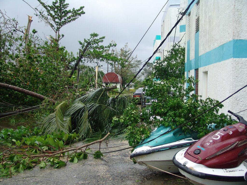 storm debris and damage